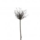 wholesale Artificial Flowers: Tea Tree branch, H87cm, brown